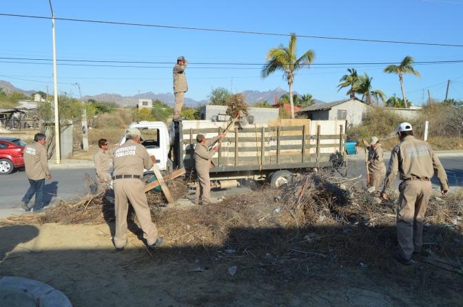 Realizan jornada de limpieza en las veredas San José del Cabo
